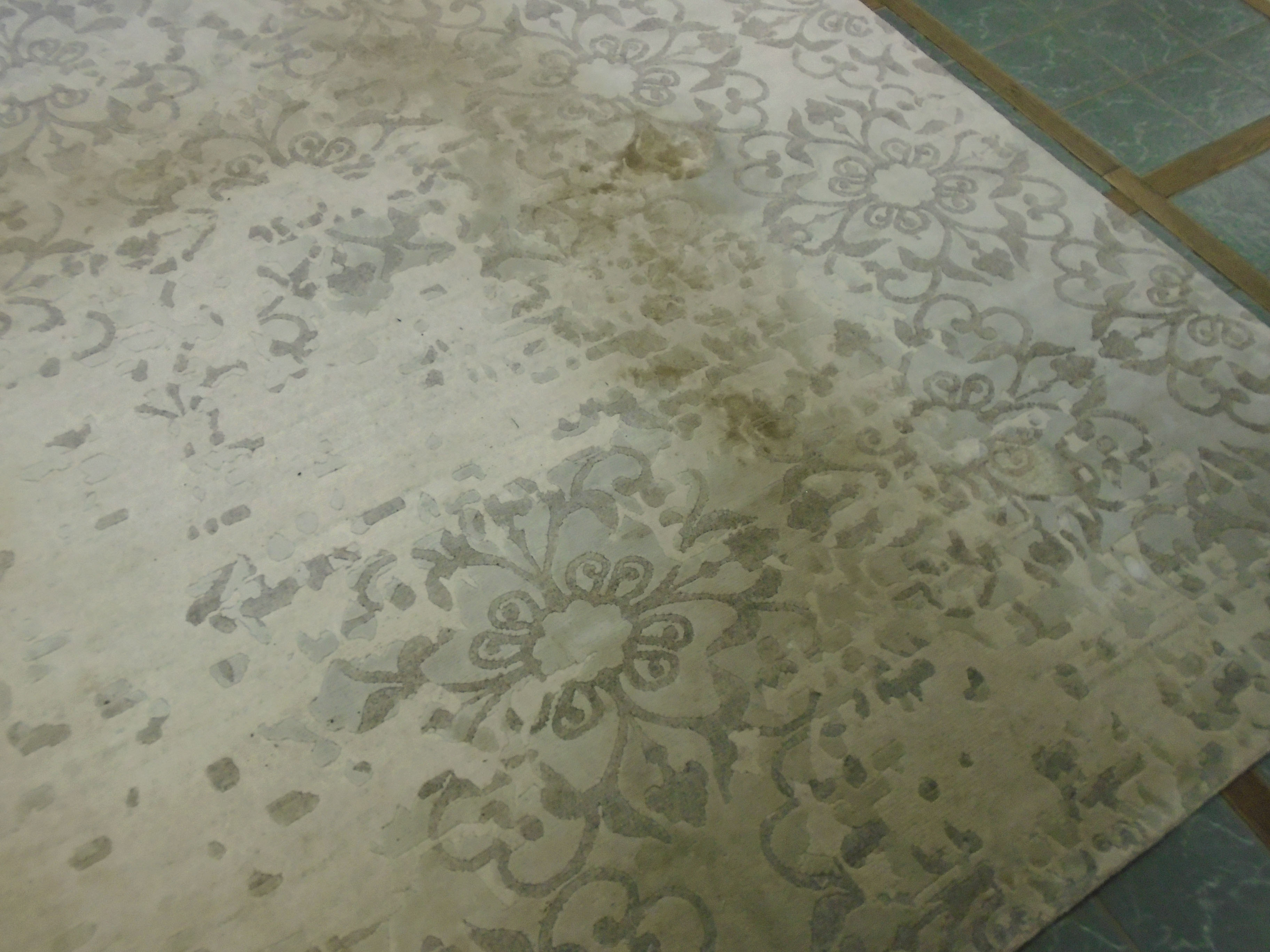 Dirty Bamboo Silk Rug Before Close Up